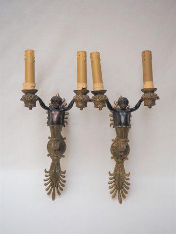 Paire d'appliques en bronze à double patine à deux bras de lumièr...