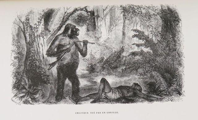 Afrique - DU CHAILLU (Paul). Voyages et aventures dans l'Afrique ...