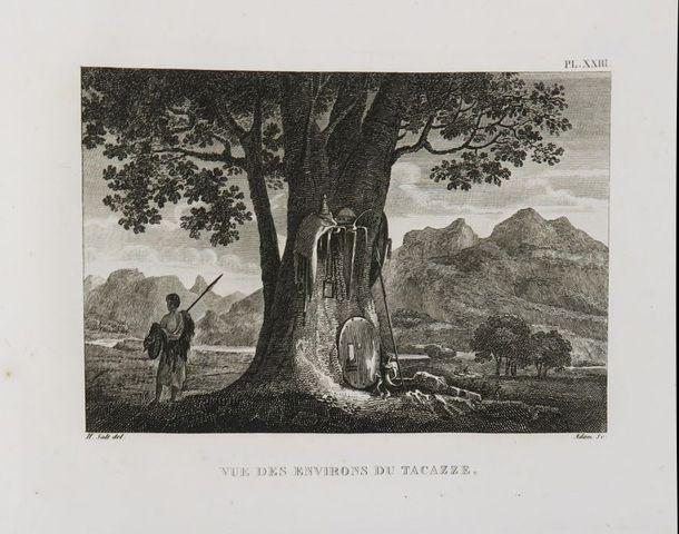 Afrique - SALT (Henry). Voyage en Abyssinie, entrepris par ordre ...