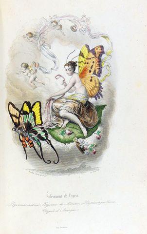 VARIN (Amédée), NUS (Eugène) & MERAY (Antony). Les Papillons, mét...