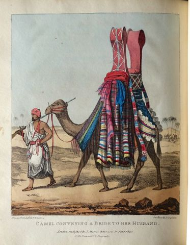 Afrique du Nord - LYON (George Francis). A Narrative of Travels i...