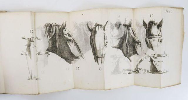 Equitation - BOURGELAT (Claude). Essai théorique et pratique sur ...