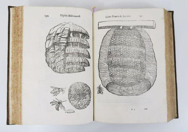 ALDROVANDI (Ulisse). De Animalibus Insectis Libri Septem; Cum Si...
