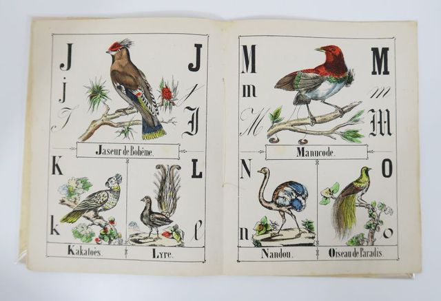 Epinal (Imagerie d'). Alphabet des oiseaux. Epinal, Pellerin, sd....