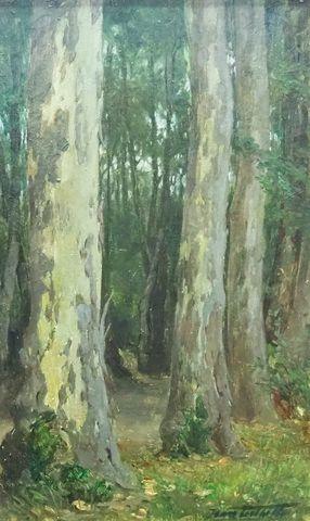 Jean TEILLIET (1870-1931) Sous bois Huile sur toile signée en bas...